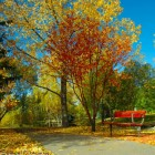 Autumn Desktop 11